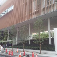 京橋こども園8
